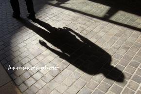 ダーリンの影