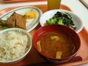 鯖の七味焼き・モロヘイヤサラダ・お揚げの味噌汁