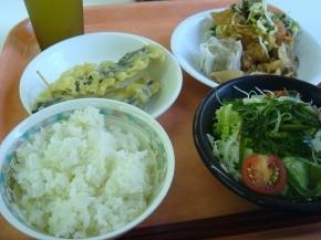 ユーリンチ・シュウマイ・ナスの天ぷら・めかぶサラダ・サマランス米
