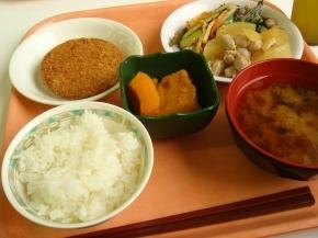 ハムカツ・大根と鶏肉の煮物・にんにくの芽とジャガイモの炒めもの・カボチャ煮・白飯・わかめの味噌汁