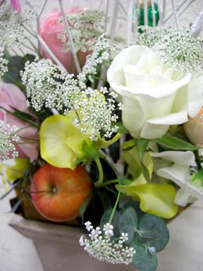 blog.20.11.19hana-c.jpg