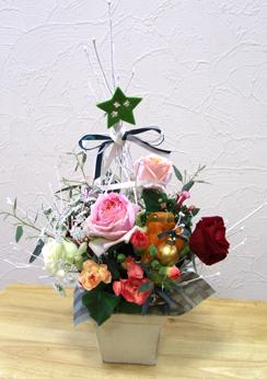 blog.20.11.30hana-c.jpg