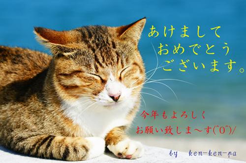 62646036_org_v1293972011.jpg