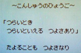 DSC02694.JPG