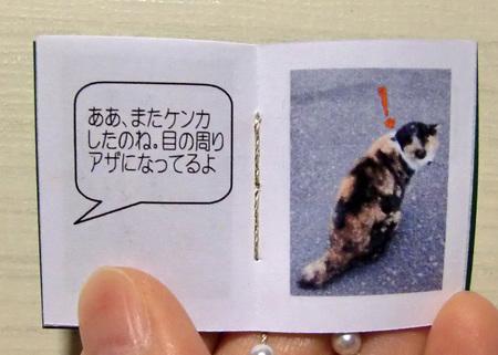 そ猫8.jpg