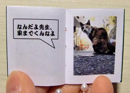 そ猫9.jpg