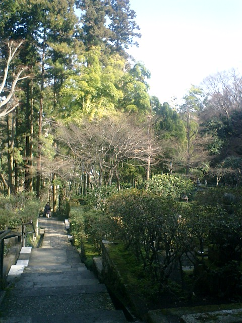 21)東慶寺、墓苑の階段から振り返る.jpg