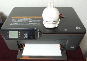 HP3520.JPG