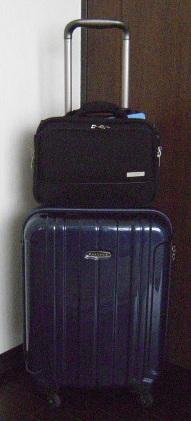 carry bag.jpg