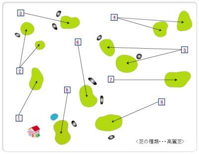 hanezawa.jpg