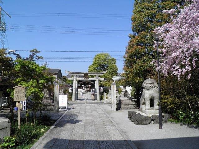 A13.04.05-31  清明神社21.jpg