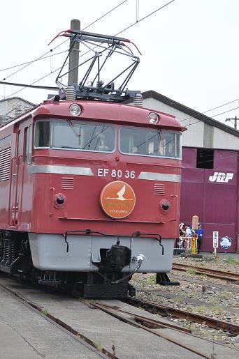 DSC_0181a.JPG