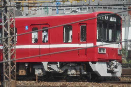 DSC_0199a.JPG