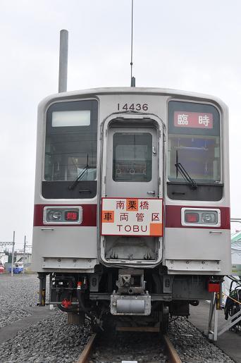 DSC_0551a.JPG