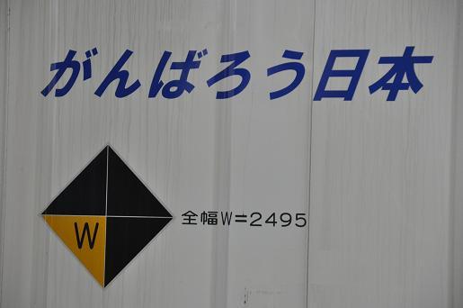 DSC_0684a.JPG