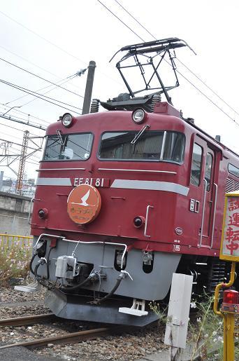 DSC_0843a.JPG
