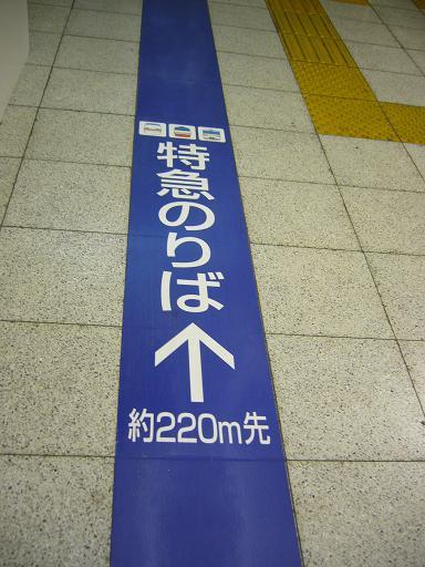 P1300566.JPG