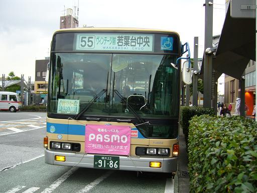 P1310857.JPG