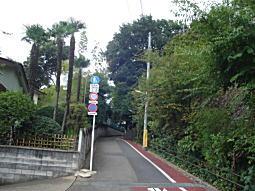 ハケの道3.JPG