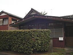 ハケの道4.JPG