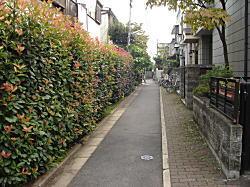 ミニ商店街3.JPG