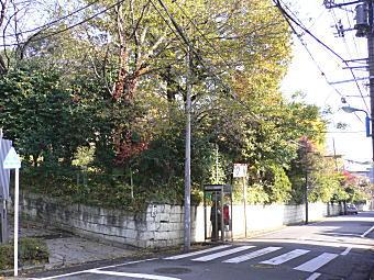 中ノ道1.JPG