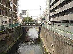 妙正寺川(通常).JPG