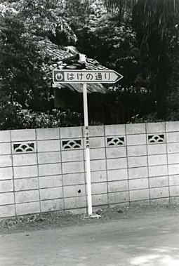 小金井ハケの道1_1974.jpg