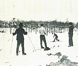 戸山ヶ原1937.jpg