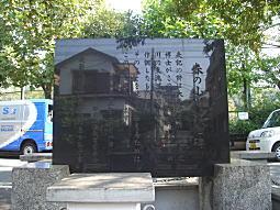 春の小川(河骨川).JPG