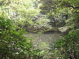 滄浪泉園池.JPG