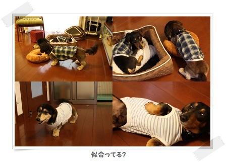 IMG_6543-tileお洋服フレームサイズ変更.jpg