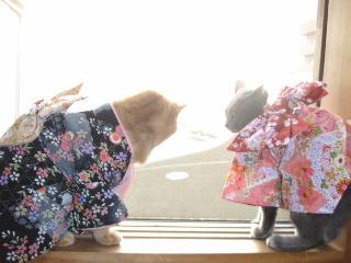 kimono-nf.jpg