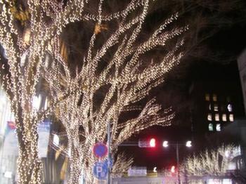 2013 12月25日松田さん 004ライトアップ.jpg