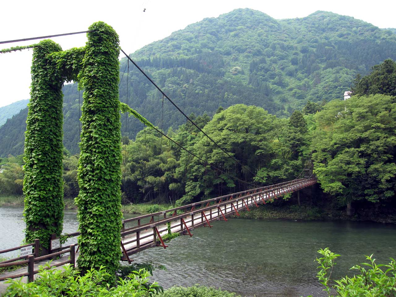 つり橋 الجسور المعلقة في اليابان つり橋
