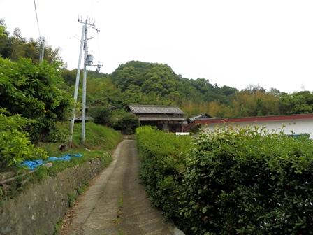 御井の清水10.jpg