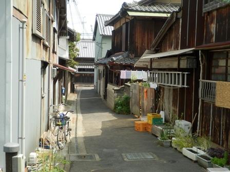 江井地区24.jpg