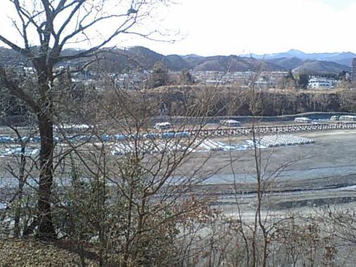 多摩川0206103.JPG