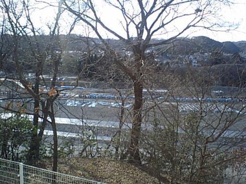 多摩川0206104.JPG