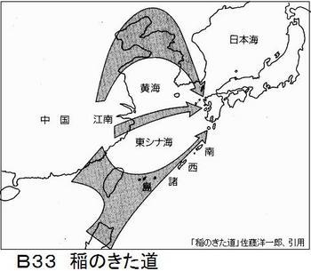 B33 稲のきた道.jpg
