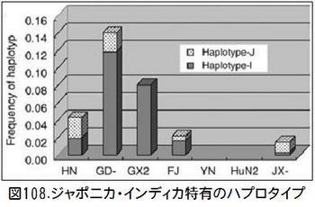 図108ハプロタイプ.jpg