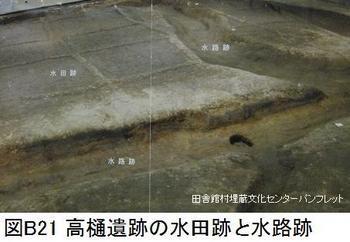 B21垂柳遺跡水田.jpg