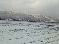 2013118雪の朝.jpg
