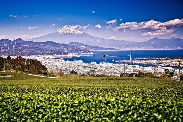 三保の松原、日本平の富士 07021116.jpg