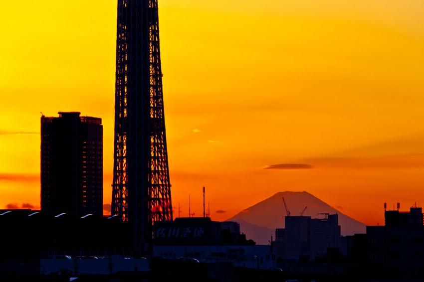 富士山と東京スカイツリー 11121038.jpg