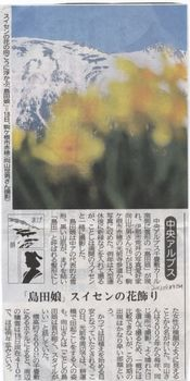 20130429信毎(宝剣岳)結果.jpg