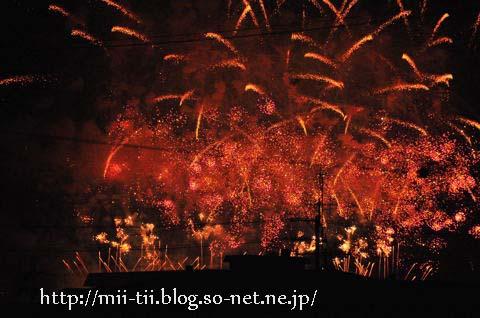 20100802d.jpg