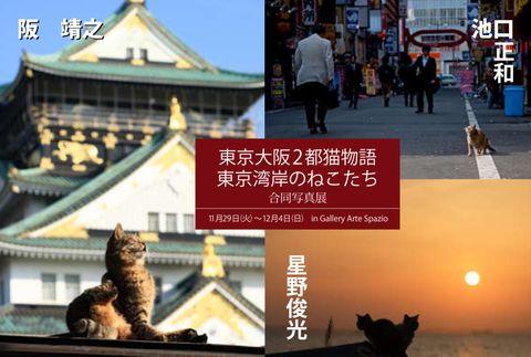 2011東京大阪2都.jpg