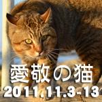 2011秋ばんさん.jpg