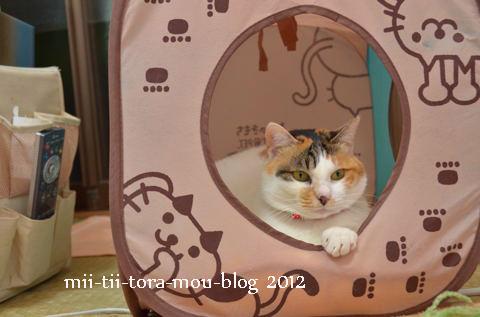 20120214.jpg